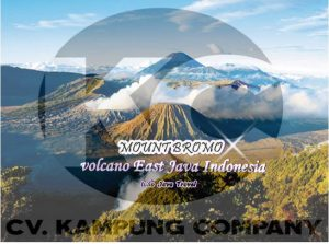 Mount Bromo Volcano East Java Indonesia