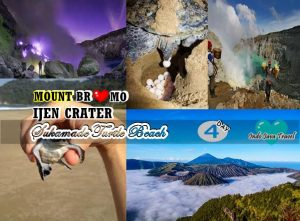 Mount Bromo Ijen Crater Sukamade Beach Tour