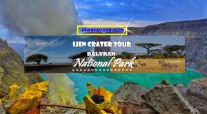 Ijen Blue Fire Baluran National Park Tour Package 2 Days