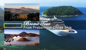 Bromo Tour From Probolinggo Cruise Ship